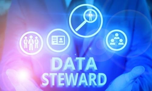 Data Steward
