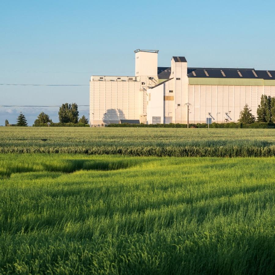 Gestion et digitalisation des coopératives agricoles